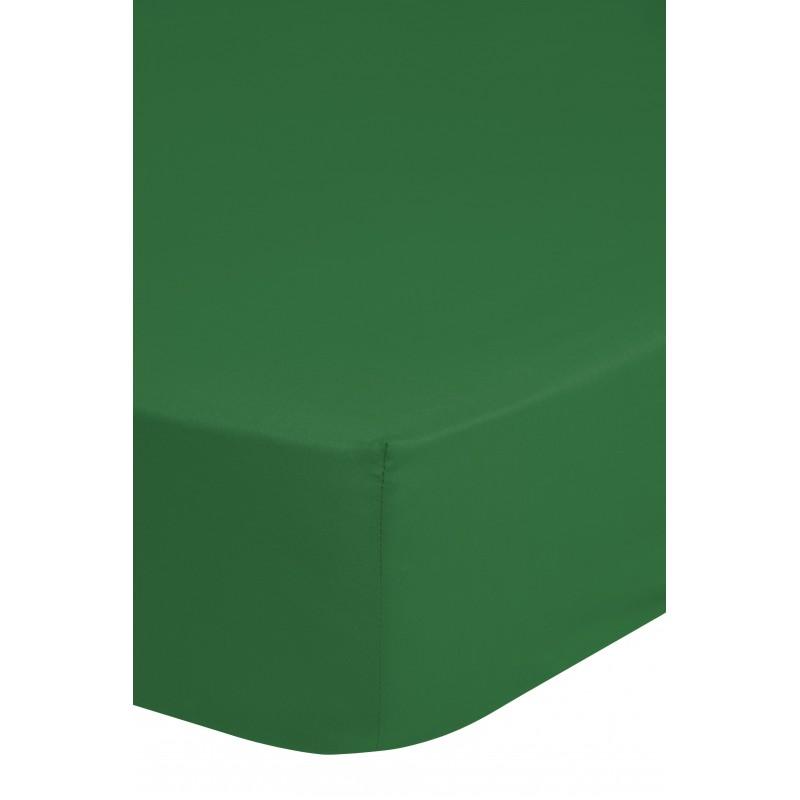 Hsl    jersey groen