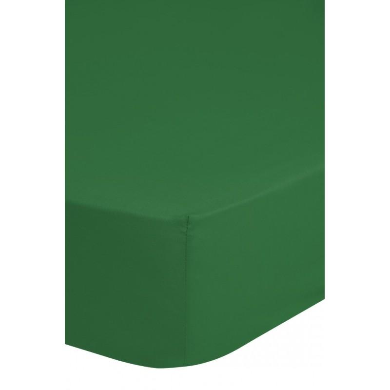 Hsl    katoen sv groen