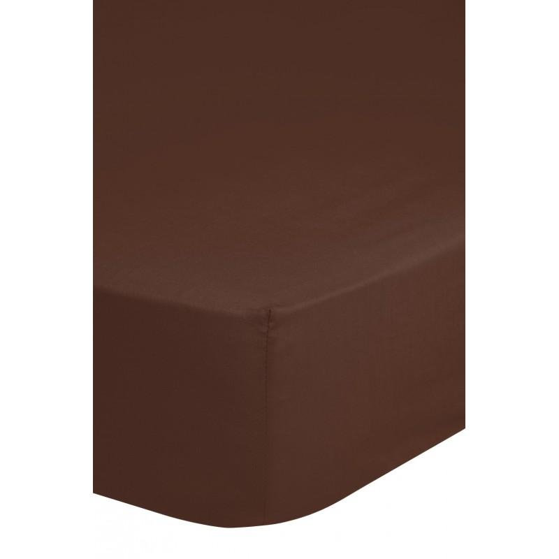 Hsl  jersey bruin