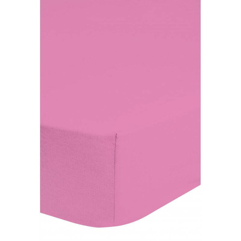 Hsl  jersey l.roze